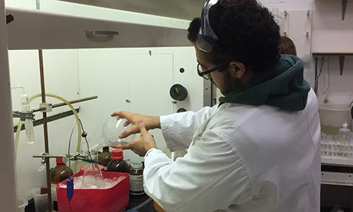 image of chemist in Synergy Semiochemical's laboratory