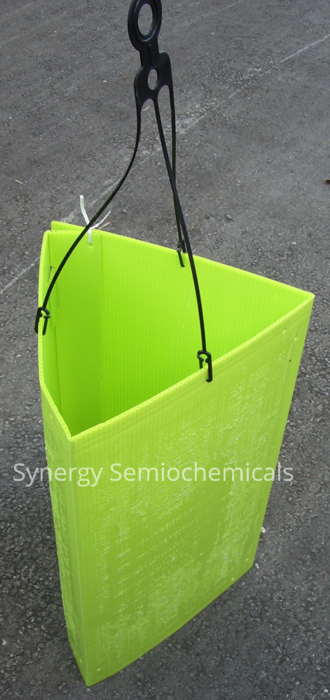 image of Synergy Semiochemicals prism trap