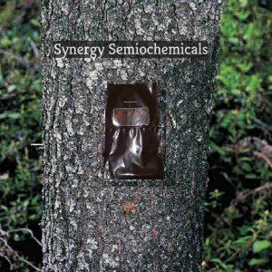 image of semiochemical  tree bait on tree